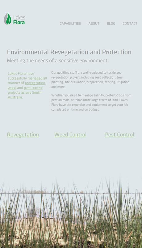 Lakes Flora Copywriting Screenshot